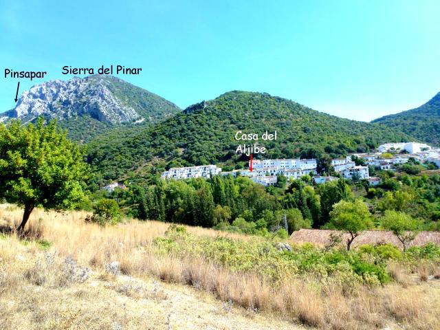 S. Pinar y casa Aljibe